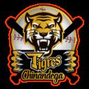 tigres logo lg 1